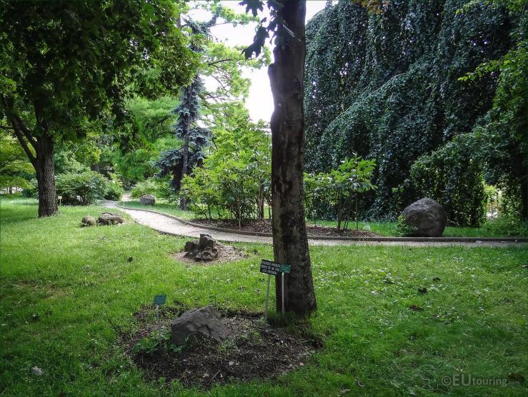 jardin_des_plantes_m14_DSC09364 s.jpg